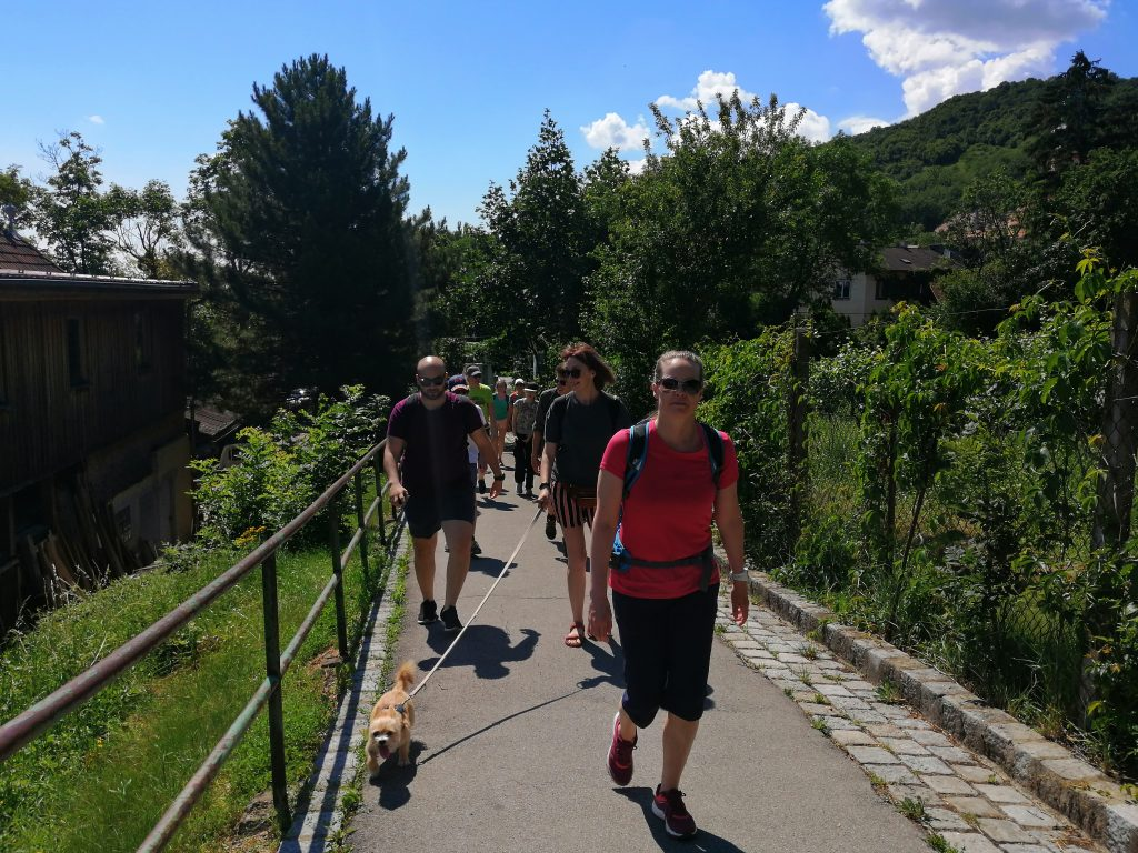 Eco-friendly sports hike in vienna